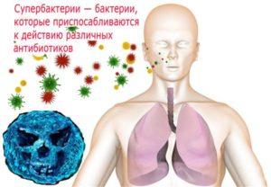 бактерии и супербактерии в жизни человека